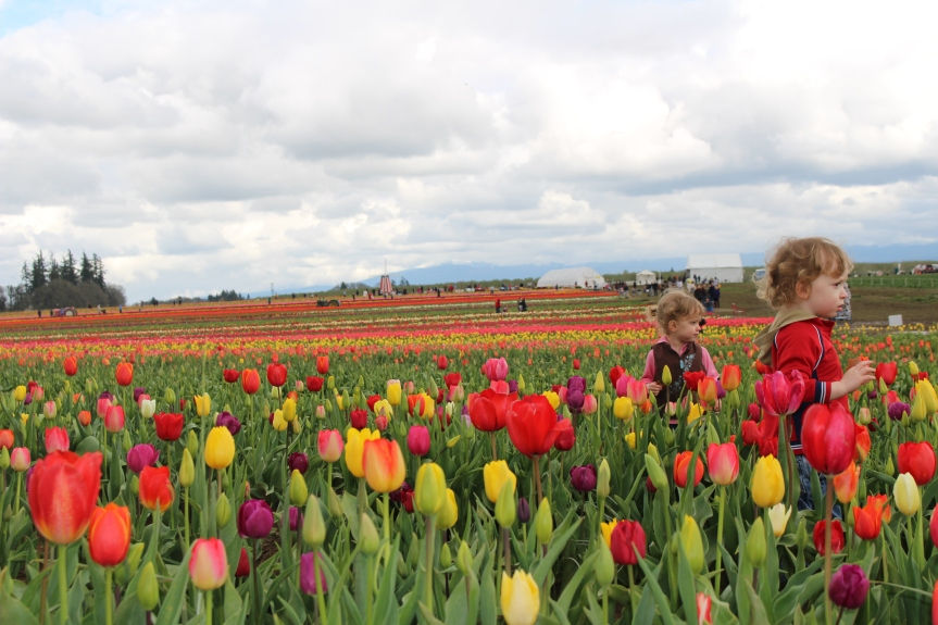 Fairs and Festivals: The Children's Area at the Wooden Shoe Tulip Festival