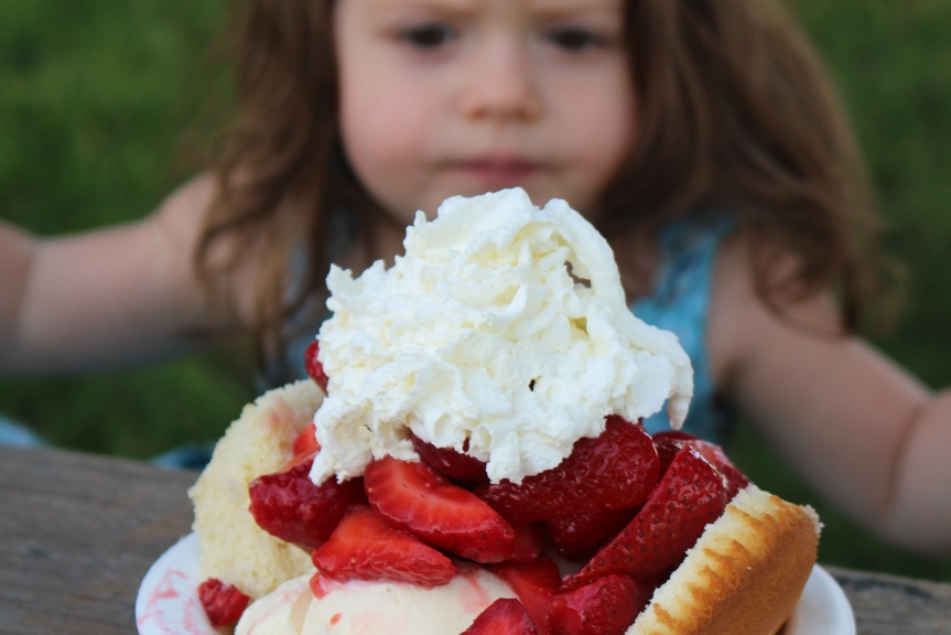 Delicious Eats: The Shortcake Stand (& Playground) at E.Z. Orchards Farm Market