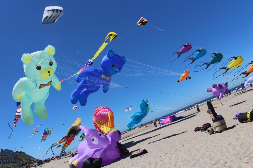 Fairs and Festivals: The Summer Kite Festival in Lincoln City